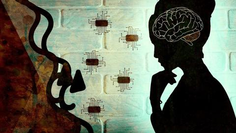 Visualisation - Woman, Brain and Microchips